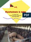 Mycotoxicosis in Swine