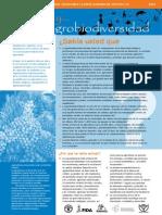 SARD Agri Biodiversity Spanish AGROBIODIVERSIDAD