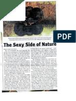 Mississippi Madawaska Land Trust Conservancy