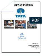 Company Profile of TATA Steel by (Anindya S Kundu)