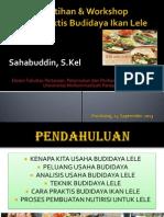Praktis Budidaya Lele