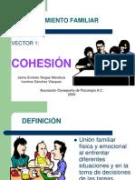 Funcionamiento Familiar Cohesion