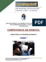 Bases Sumos Kanturobot 2013