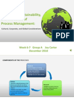 Innovation, Sustainability, and Levels of Process Management - by Joy Carter