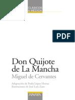 Quijote Adaptado
