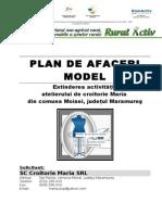 Model Plan de Afacere