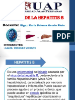 Hepatitis b Diapos