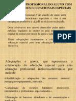 EDUCAÇÃO ESPECIAL 2