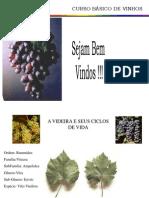 1auladevinhosoficial-12740546486877-phpapp02