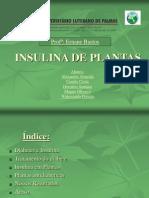 Insulina de Plantas_oficial 2ppt