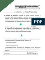 CAPITULO I - Conceitos Fundamentais de Analise e Gestao Financeira