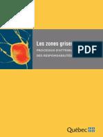 8.Les Zones Grises