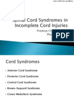 Spinal Cord Syndromes in Incomplete Cord Injuries