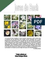 Las Flores de Bach por Helena Rodríguez Montes