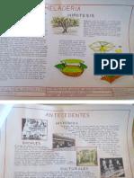 proyecto_caseta