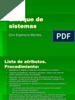 6.Enfoque sistémico