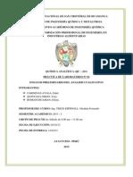 PRACTICA Nº 02 quimica analitica.docx