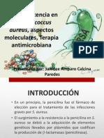 MULTIRRESISTENCIA DE S.aureus EXPO ORIGINAL LO ULTIMO.pptx