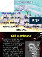 The Plasma Membrane and Cell Wall (Team 4)