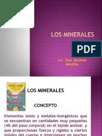 Oligoelementos Los Minerales Reparado
