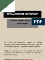 6 Activacion de Linfocitos