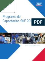 Programa de capacitación  skf