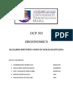 Ergonomic Report