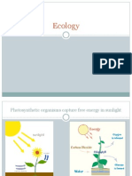 Ecology Pwrpoint