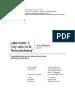Informe 1 Ley Cero Final