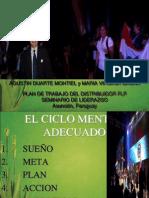 Agustin Duarte-plan de Trabajo Del Distribuidor Flp Definitivo