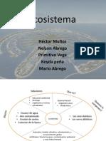 asignacion martes grupo 3 ecosistema