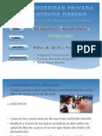 Diapositivas  desnutricion