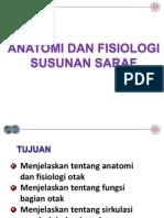 Anatomi Dan Fisiologi SSP