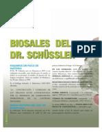 Bio Sales de Schussler Articulo en Revista
