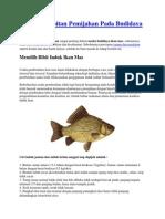 Cara Pembibitan Pemijahan Pada Budidaya Ikan Mas
