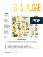 An Introduction to Fungi and Algae