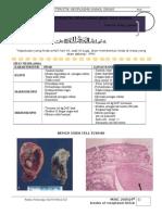 Karakteristik Neoplasma Jinak & Ganas
