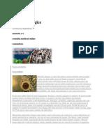 Infectiile fungice