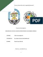 Universidad Peruana Los Andes - Proyecto