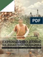 Expansão do dendê na Amazônia brasileira