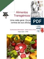 Transgénicos, uma visão geral sobre os prós e contras