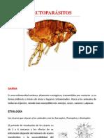 14. Ectoparásitos