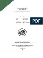 Laporan Praktikum_kimia Dasar 1_senyawa Biokimia