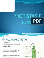 Protista Se Fun Go s