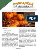 Chrząszcz - Październik 2013 (nr 91)