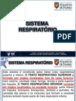 Sistema Respiratorio Fmn PDF