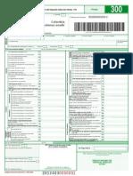 Formulario Iva 300-2013