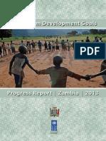 MDG Report 2013