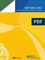 NAP-séptimo_2011