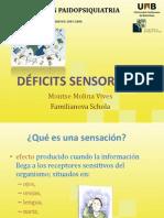 Modulo-8 Deficit Sensorial